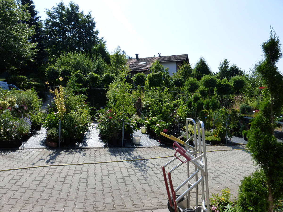 Baumschule Garten Premm Roding