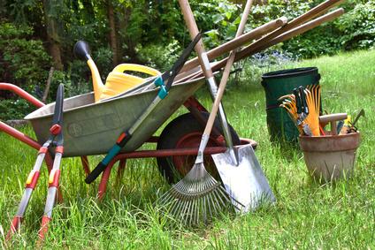 Premm Baumschule Pflanzenverkauf Waldpflanzen Forstpflanzen